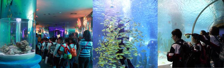 9.26无锡动物园,海洋馆试营业